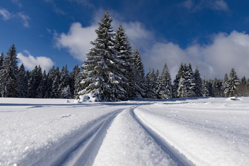 snow-3137807 1920